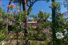 Holiday homeItaly - Tuscany/Elba: Il Girasole