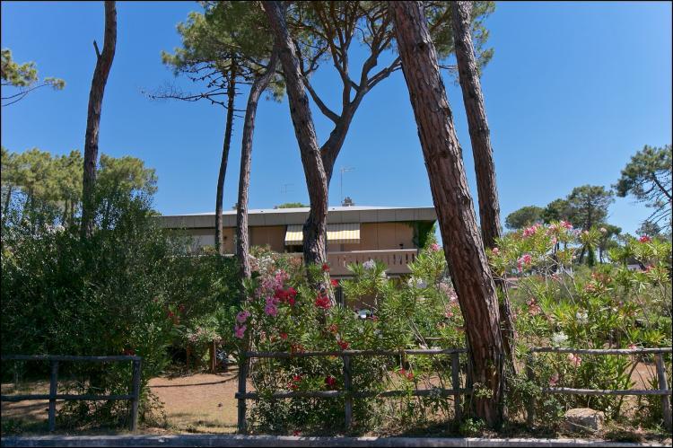 Holiday homeItaly - Tuscany/Elba: Il Girasole  [2]
