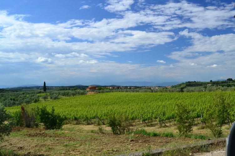 VakantiehuisItalië - Toscane/Elba: Terra Nisa  [39]