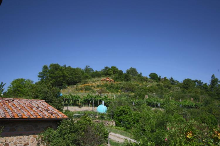 Holiday homeItaly - Umbria/Marche: Club House  [30]