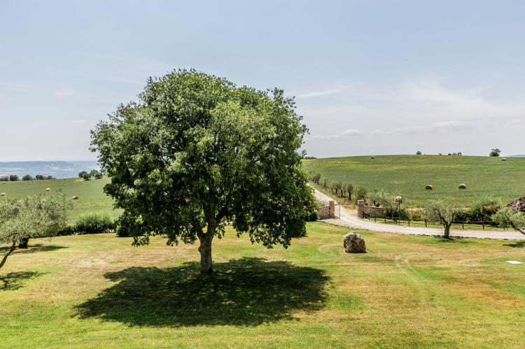 Holiday homeItaly - Umbria/Marche: La Roverella  [11]