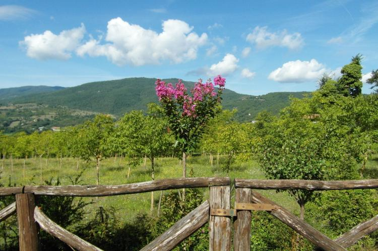 Holiday homeItaly - Tuscany/Elba: Il Fienile  [39]