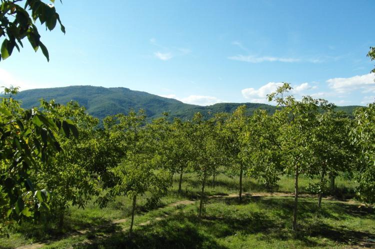 Holiday homeItaly - Tuscany/Elba: Il Fienile  [36]