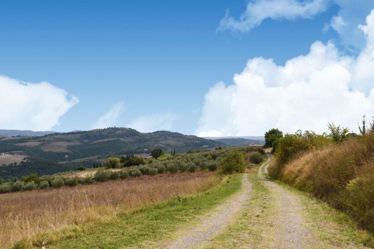 Holiday homeItaly - Tuscany/Elba: Piandigoro - I Lecci  [36]