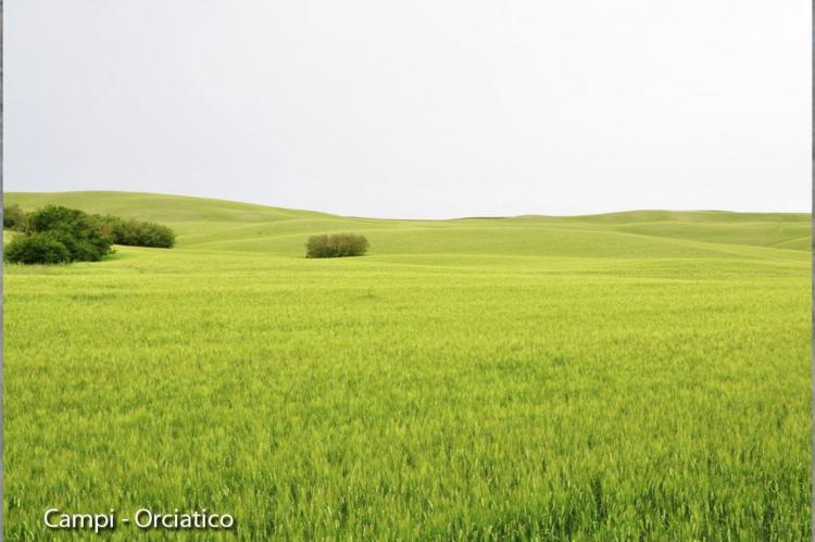 Holiday homeItaly - Tuscany/Elba: San Francesco Tre  [15]