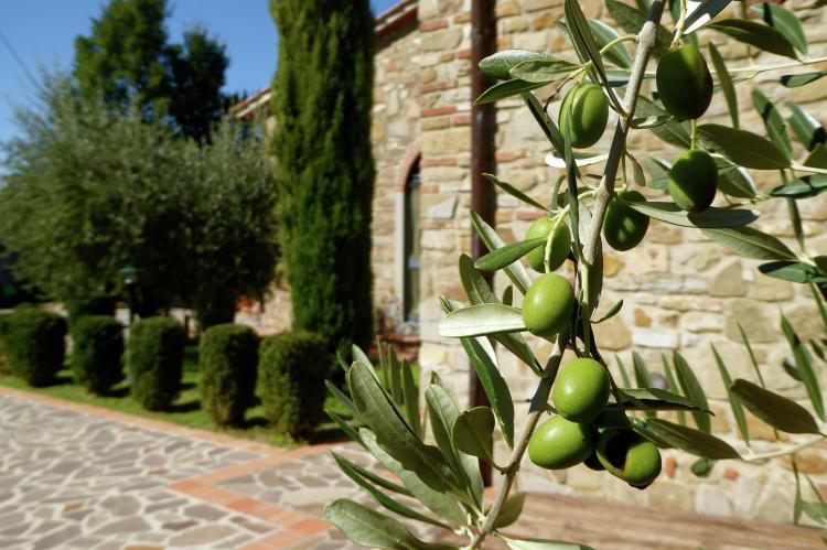 Holiday homeItaly - Tuscany/Elba: Borgo Montecarelli Nocciolo  [25]