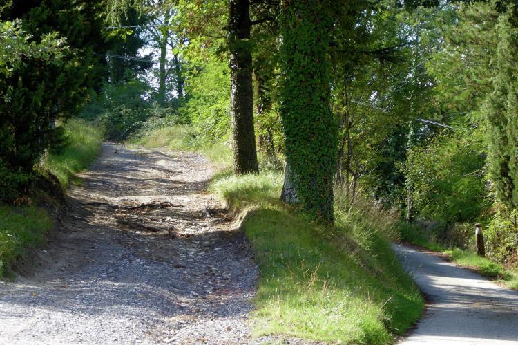 Holiday homeItaly - Tuscany/Elba: Borgo Montecarelli Nocciolo  [31]