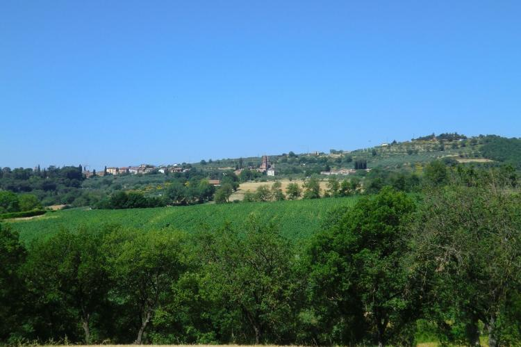 Holiday homeItaly - Umbria/Marche: Lavanda  [33]