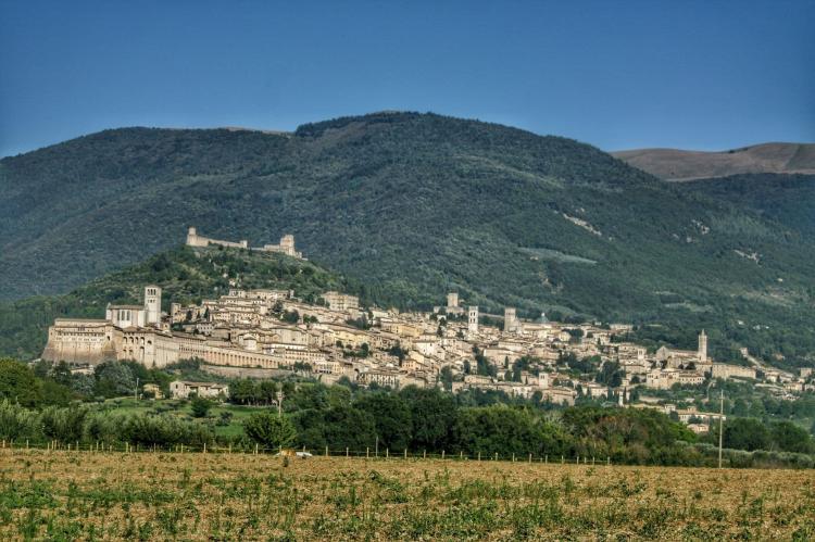 Holiday homeItaly - Umbria/Marche: Calendula  [38]