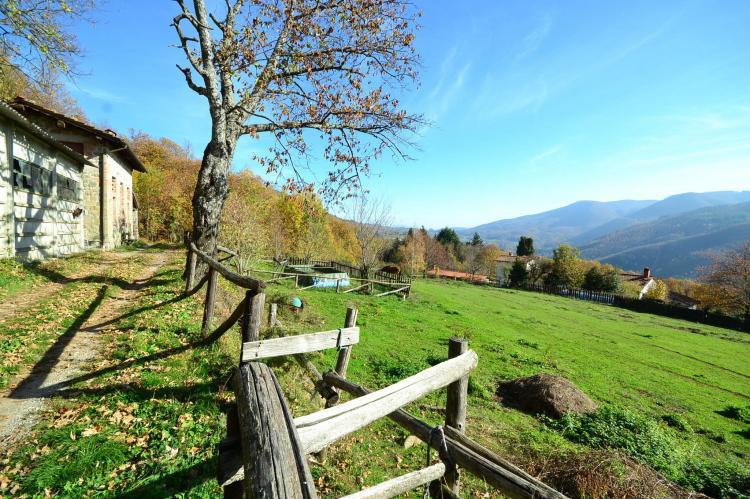 Holiday homeItaly - Tuscany/Elba: Caprioli  [24]