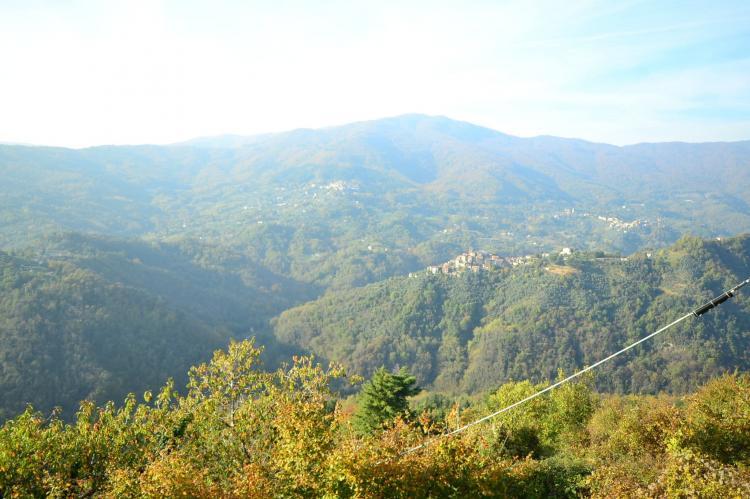 Holiday homeItaly - Tuscany/Elba: Caprioli  [26]