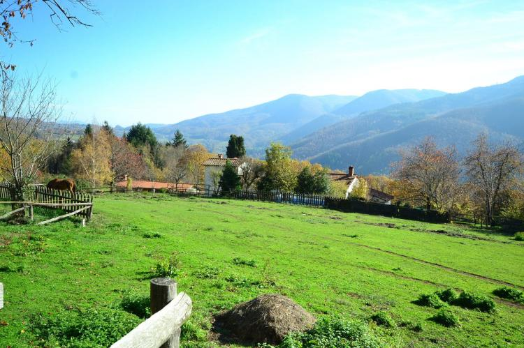 Holiday homeItaly - Tuscany/Elba: Caprioli  [5]