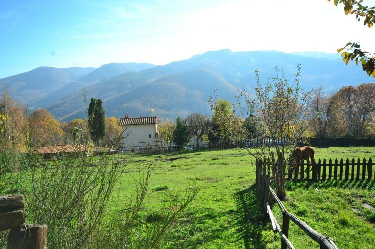 Holiday homeItaly - Tuscany/Elba: Caprioli  [22]