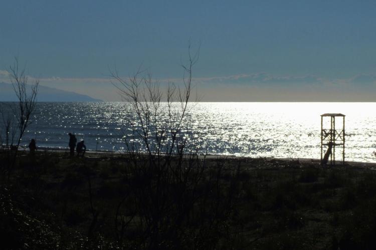 Holiday homeItaly - Tuscany/Elba: Iris  [30]