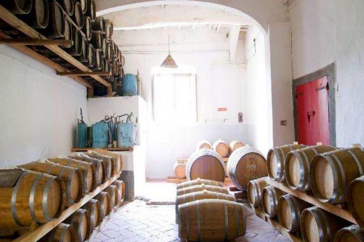 VakantiehuisItalië - Toscane/Elba: Casa Orcio  [39]