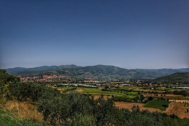 Holiday homeItaly - Tuscany/Elba: Montecchio  [32]