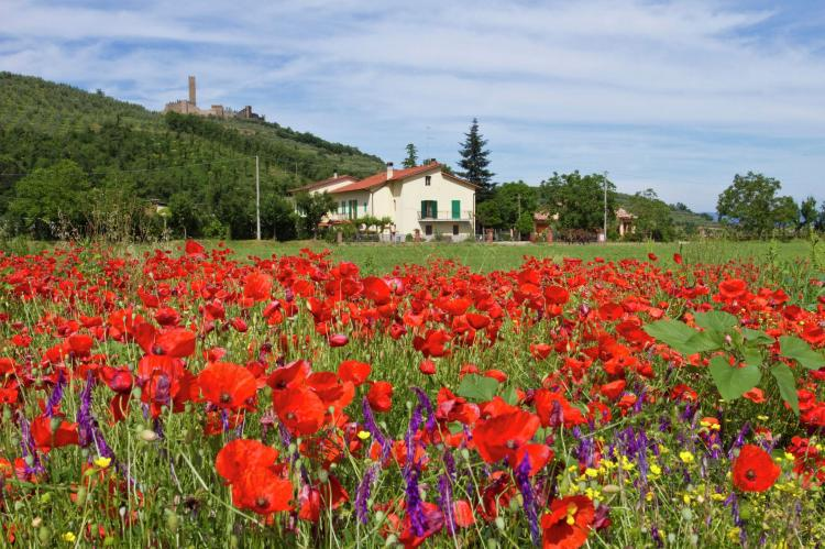 Holiday homeItaly - Tuscany/Elba: Montecchio  [6]