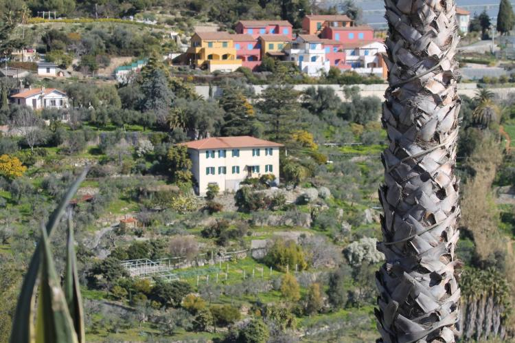 Holiday homeItaly - Liguria: Irene  [3]