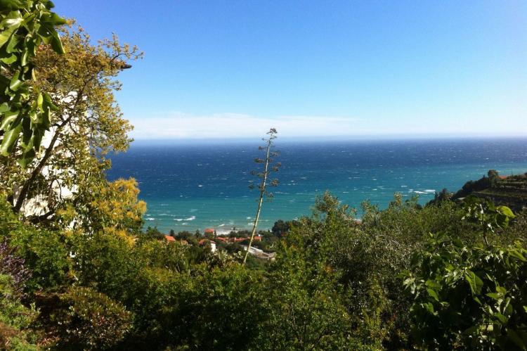 Holiday homeItaly - Liguria: Irene  [21]