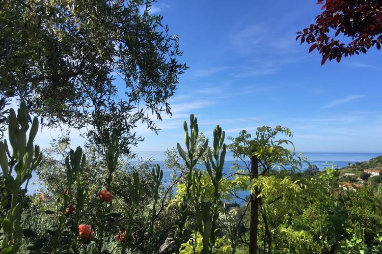 Holiday homeItaly - Liguria: Irene  [5]