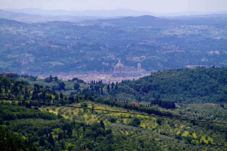 Holiday homeItaly - Tuscany/Elba: Le Olive  [7]