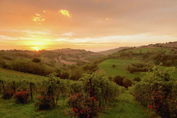 Holiday homeItaly - Umbria/Marche: Domus  [1]