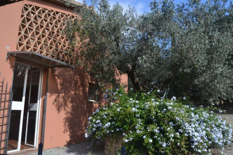 Holiday homeItaly - Tuscany/Elba: Lidia  [19]