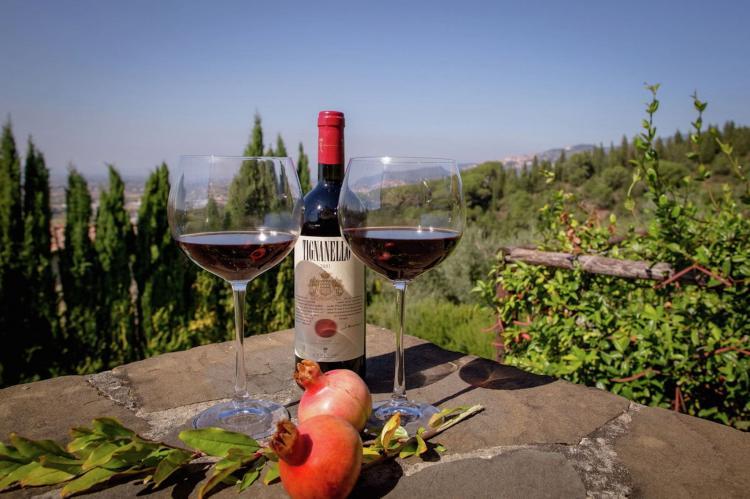 Holiday homeItaly - Tuscany/Elba: Villa Terra  [16]