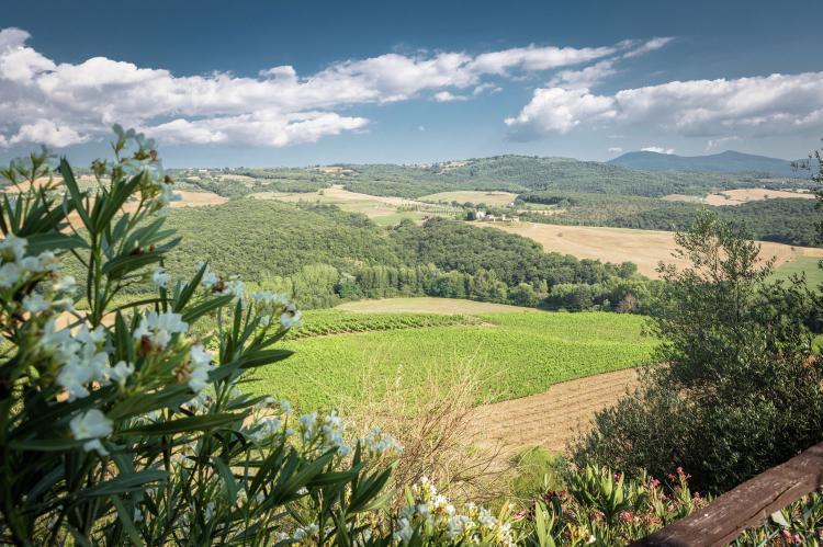 Holiday homeItaly - Tuscany/Elba: Villa Giovanna  [39]