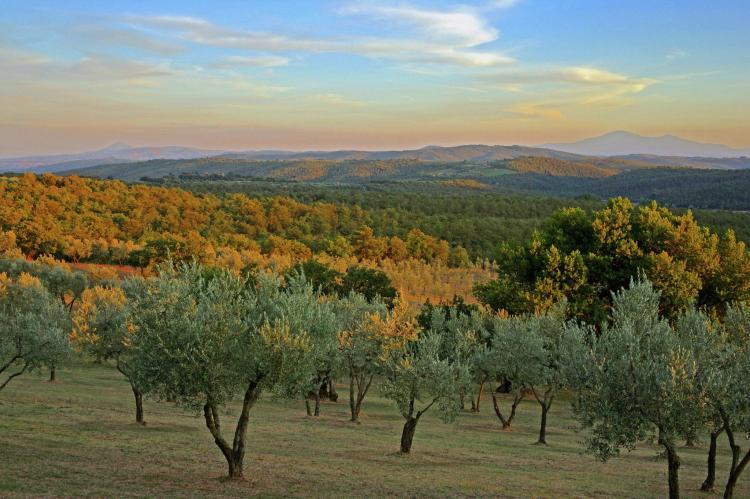 Holiday homeItaly - Tuscany/Elba: Cipresso  [35]