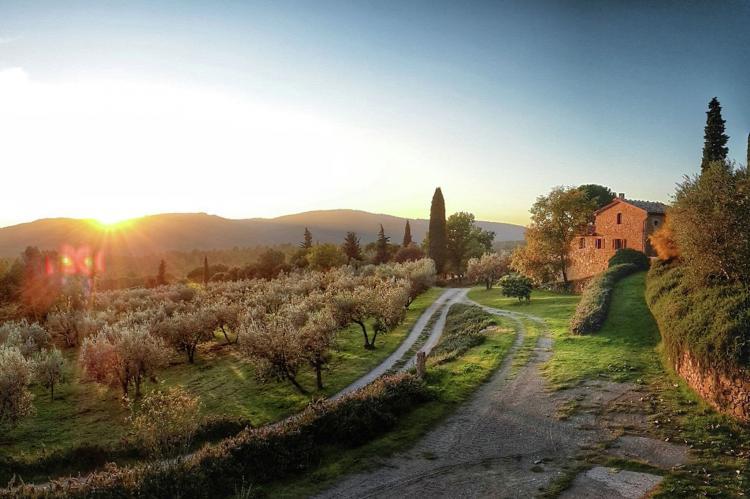 Holiday homeItaly - Tuscany/Elba: Cipresso  [30]