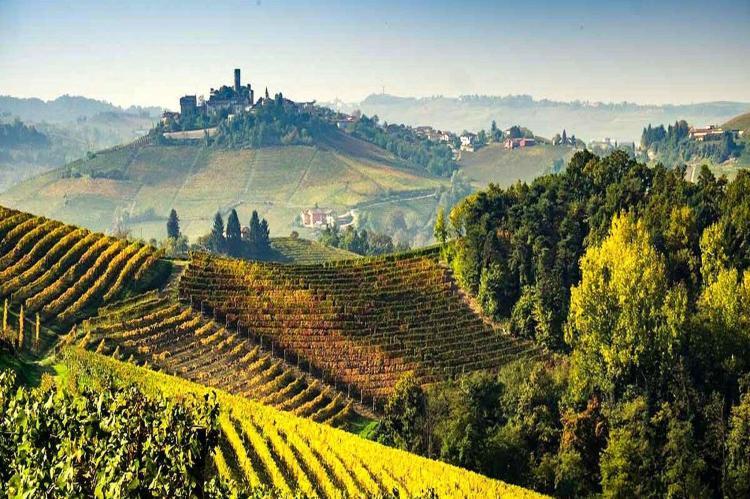 Holiday homeItaly - Piemonte: La Torre  [24]
