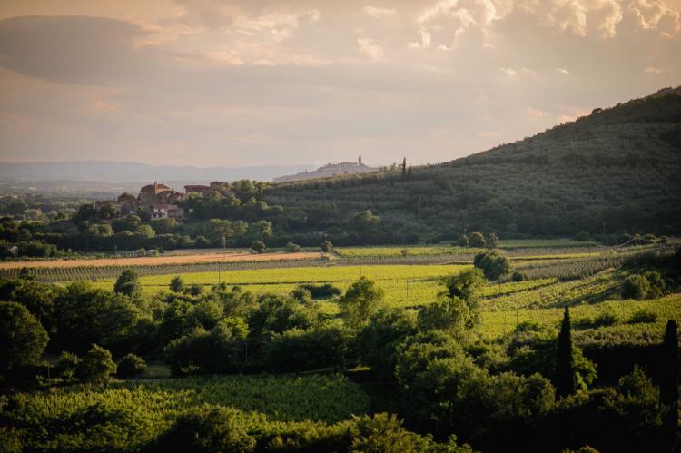 Holiday homeItaly - Tuscany/Elba: Villa Giuliana  [25]