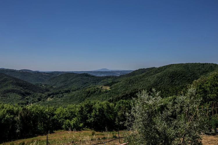 Holiday homeItaly - Umbria/Marche: Zafferano  [38]