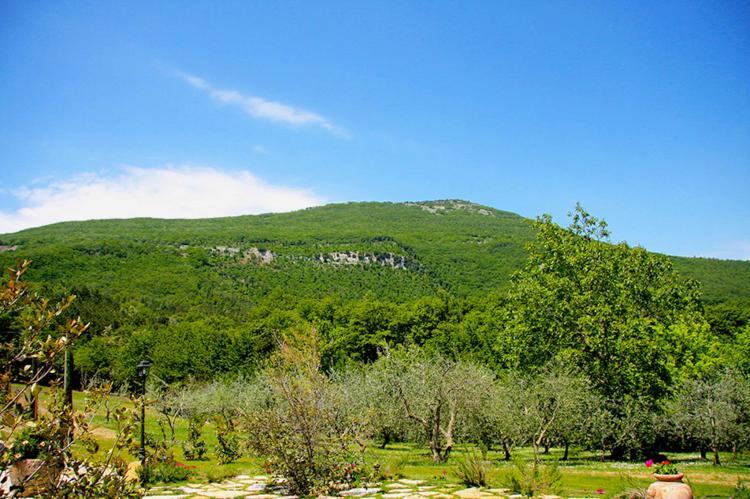 Holiday homeItaly - Tuscany/Elba: Villa Pietra  [9]