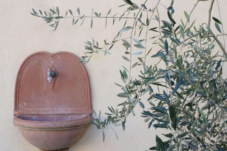 Holiday homeItaly - Tuscany/Elba: Ginestra  [38]