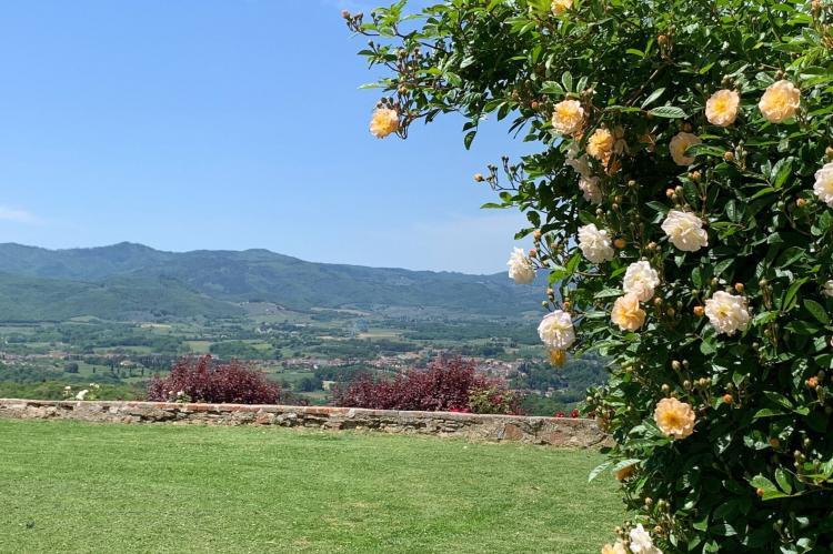 Holiday homeItaly - Tuscany/Elba: Ginestra  [28]