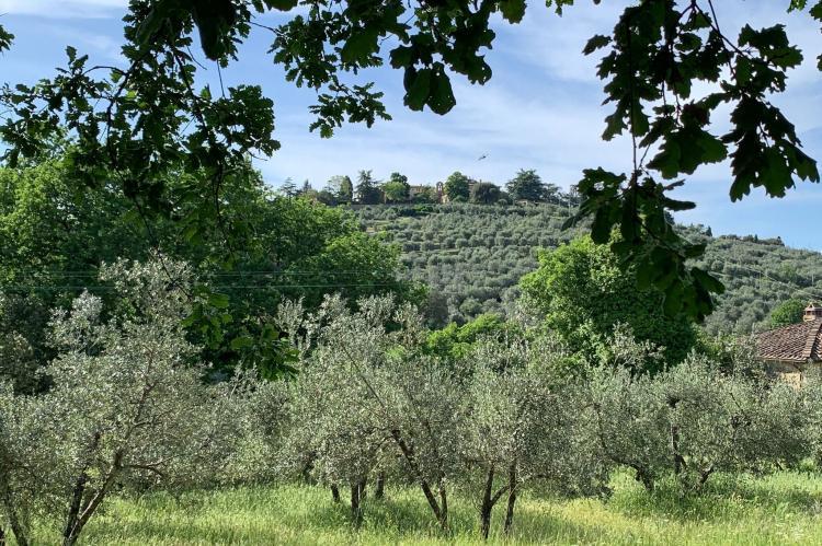 Holiday homeItaly - Tuscany/Elba: Ginestra  [34]