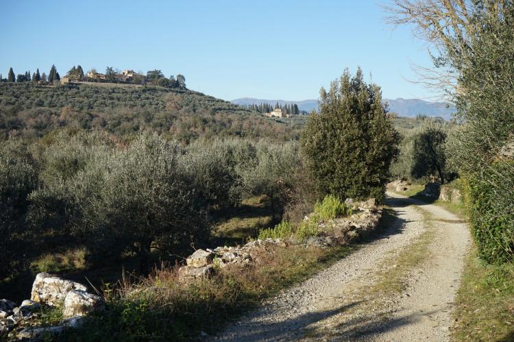 Holiday homeItaly - Tuscany/Elba: Ginestra  [33]