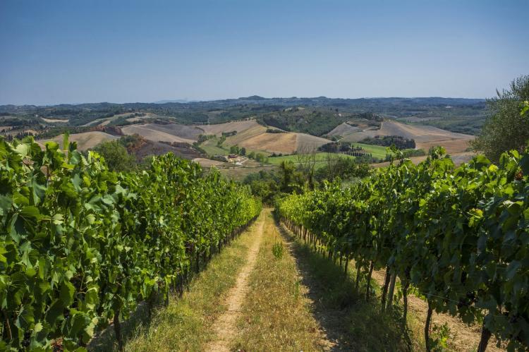 Holiday homeItaly - Tuscany/Elba: Fienile  [33]
