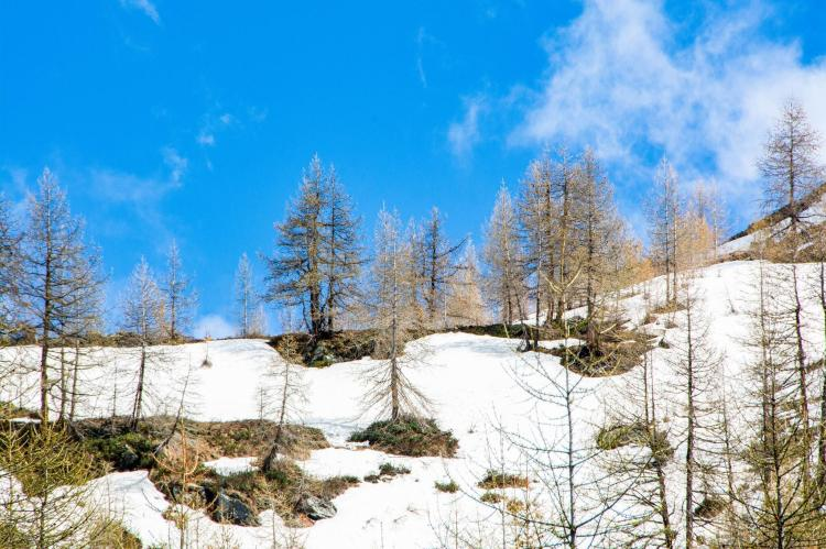 Holiday homeItaly - Valle d'Aosta: One-Room Apartment directly on Cervinia Ski slopes  [34]