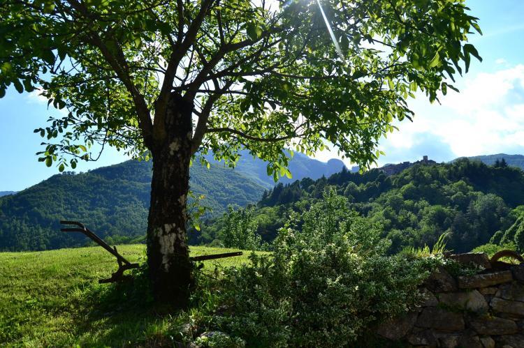 Holiday homeItaly - Tuscany/Elba: Boccabugia del Colle  [25]