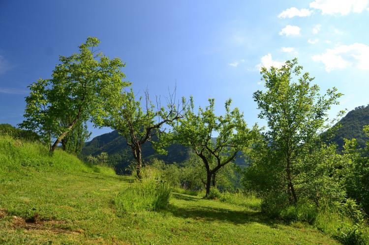 Holiday homeItaly - Tuscany/Elba: Boccabugia del Colle  [36]