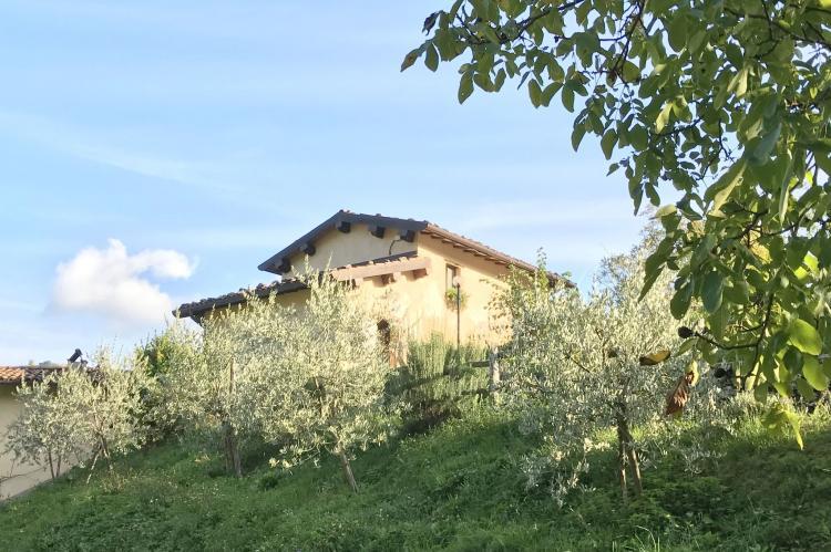 Holiday homeItaly - Tuscany/Elba: Boccabugia del Colle  [37]