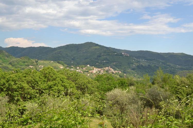 Holiday homeItaly - Tuscany/Elba: Olivi Rosso  [10]