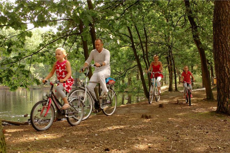 Holiday homeNetherlands - Noord-Brabant: Bospark 't Wolfsven 4  [18]
