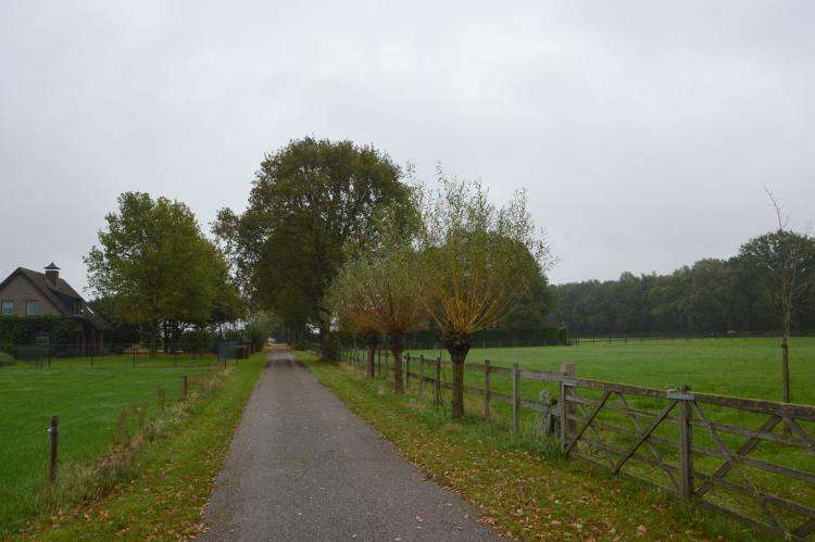 Holiday homeNetherlands - Noord-Brabant: Op de Beemd  [29]