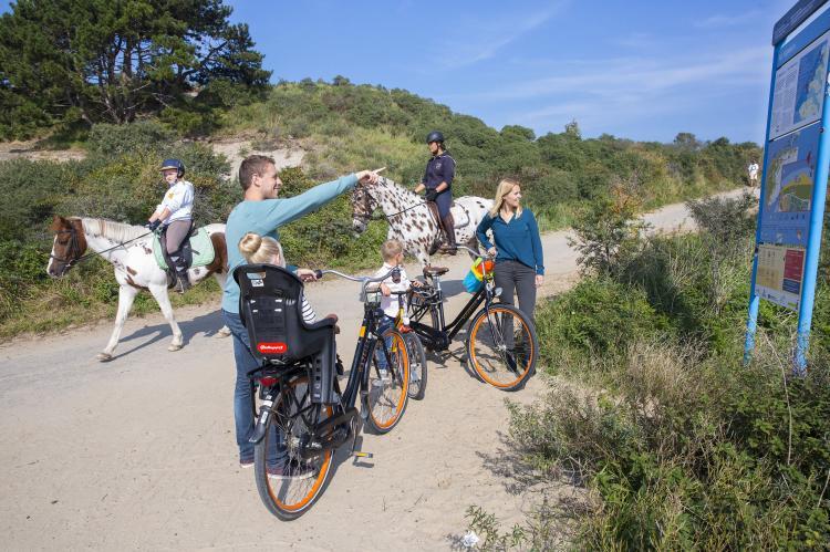 VakantiehuisNederland - Zeeland: Vakantiepark de Soeten Haert 14  [32]
