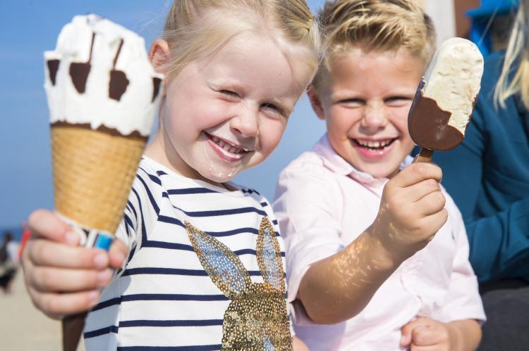 VakantiehuisNederland - Zeeland: Vakantiepark de Soeten Haert 14  [39]