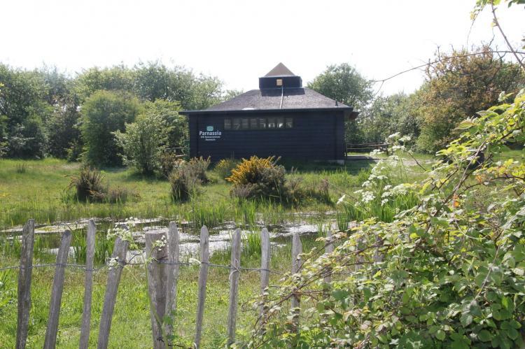 VakantiehuisNederland - Noord-Holland: Huize Glory Turkoois  [19]
